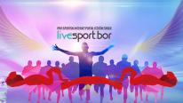 Prvi sportski portal regiona istočne Srbije: O nama