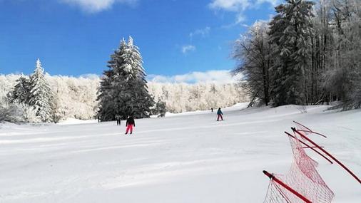 Detalj sa skijališta na Crnom vrhu / foto: V.Dimitrijević